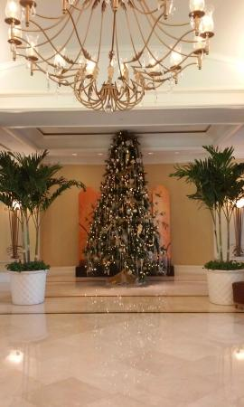 Lobby Christmas Tree in the middle