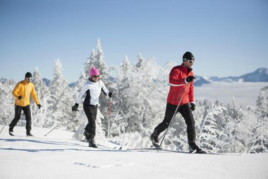 The Inn at Steamboat : Nordic Skiing