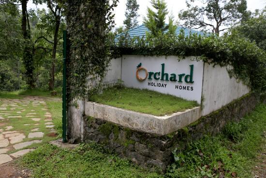 ORCHARD HOLIDAY RESORT