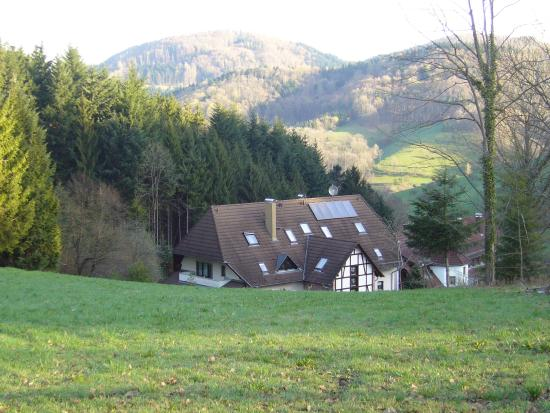 Sexau, Germany: Beggasthaus Linde metsän ja peltojen ympäröimä