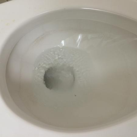 La Quinta Inn & Suites Tacoma Seattle: Ring around toilet bowl