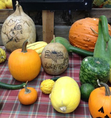 Fallon, NV: Pumpkin art