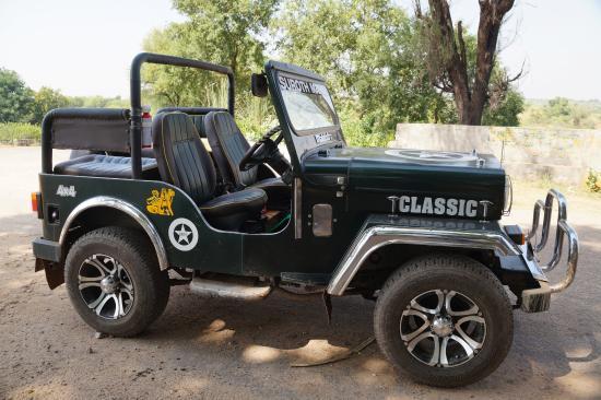 Open Jeep For Sale In Pakistan >> Open Jeep - Picture of Suroth Mahal, Karauli - TripAdvisor