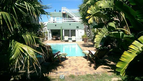 Secret Garden Guesthouse : Garten und Pool