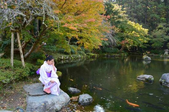 Naritasan Omote Sando : Falls in Naritasan