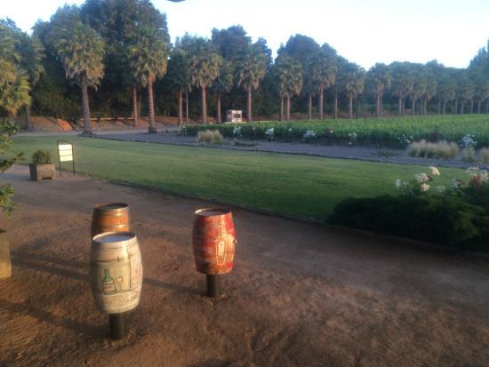 Estampa Winery: Vista desde la terraza