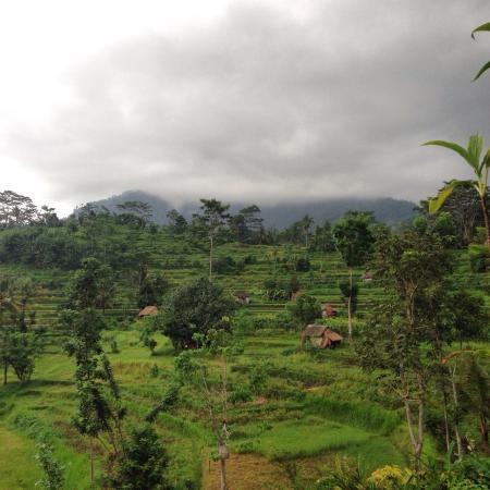 Surya Shanti Villa: View from our balcony Agung 1