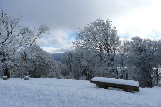 Schauinslandbahn: winterlandscape Schauinsland