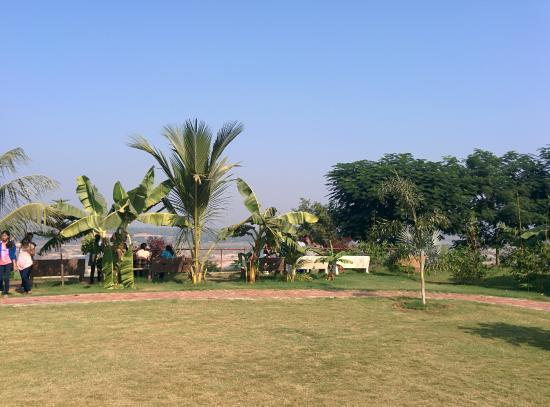 Riparian - A River Side Resort : View Of Ground