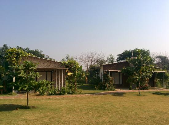 Riparian - A River Side Resort : Rooms