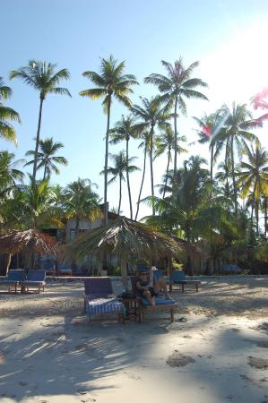 Pleasant View Resort: Beach beds with hotel rooms in the back