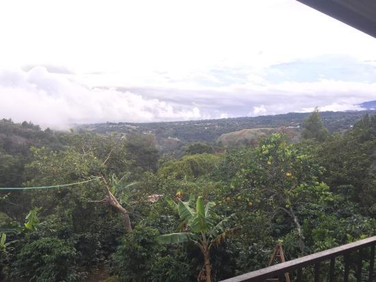 Feliciano Tours: Vistas de la plantación y de Boquete desde la finca de Feliciano.