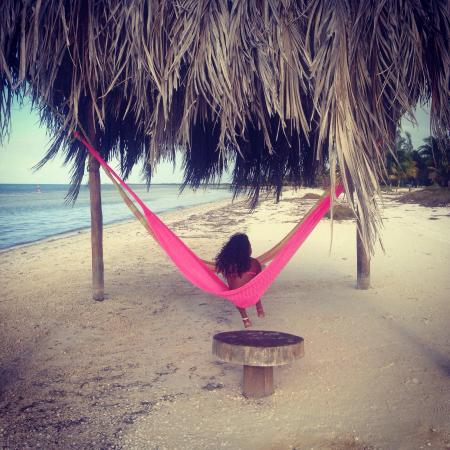 Hotel Casa Palapas del Sol: Relaxing at the beach hammock