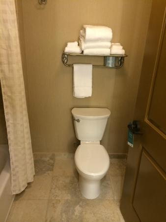 Bathroom Fixtures Billings Mt bathroom - picture of homewood suiteshilton billings, mt