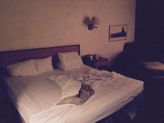 Quality Inn & Suites Airport North: This is the condition of the room when it was given to us