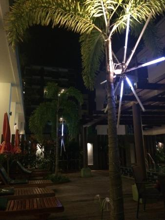 Baramee Hip Hotel: У бассейна вечером