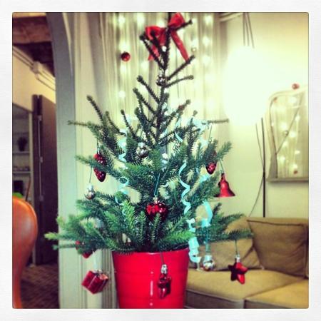 Primavera Hostel: Christmas