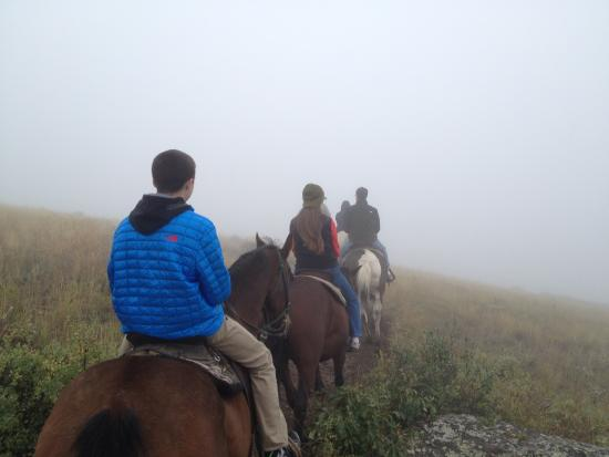 Spring Creek Riding Stables: Foggy day for a ride