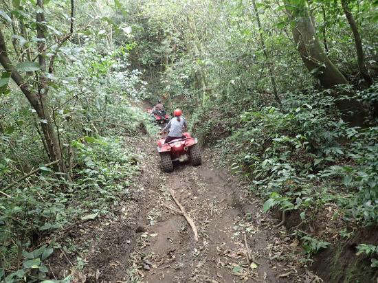 Costa Rica Private Tours: ATV Jungle Tour