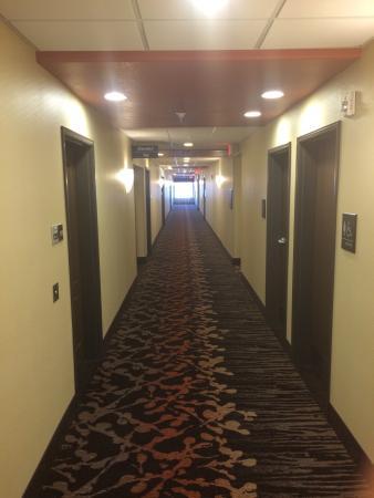 Hampton Inn & Suites Albuquerque North/I-25 : Wide hallways
