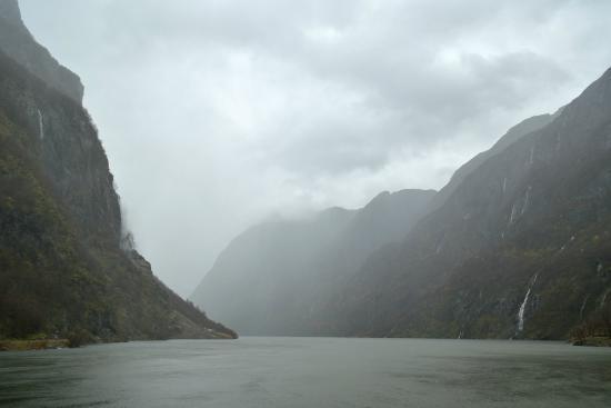 More Rain Picture Of Fjord Tours Bergen Tripadvisor