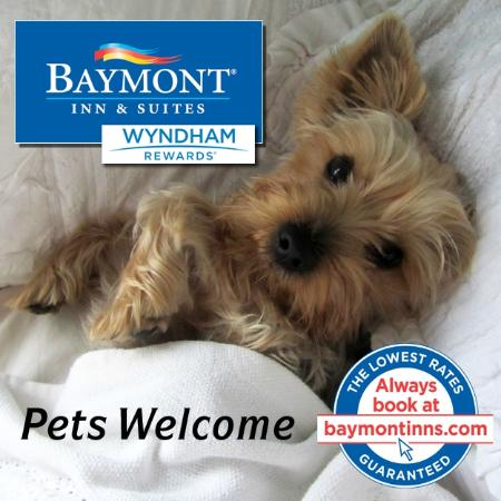 Baymont Inn Suites Bartonsville Poconos Pet Friendly Hotel