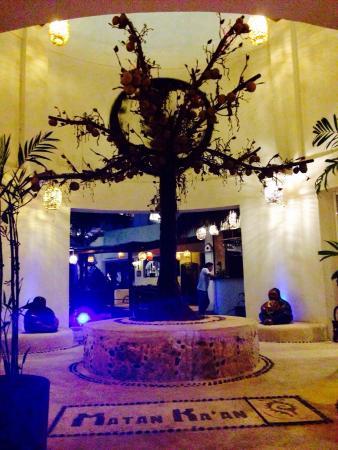 Koox Matan Ka'an Hotel: Arbol de la vida