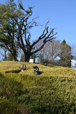 The Hakone Open-Air Museum: outdoors
