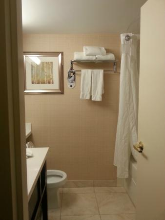 Holiday Inn Conference Ctr Edmonton South: Adequate sized bathroom