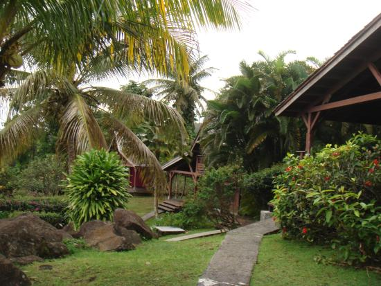 Le Jardin Malanga : Vue sur les bungalows