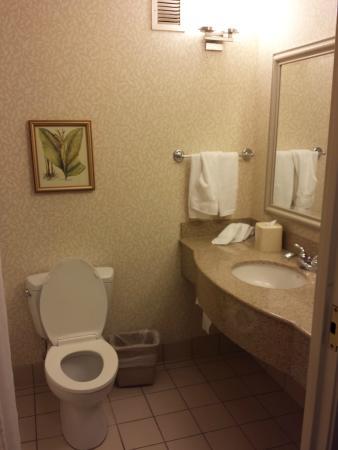 Hilton Garden Inn Spokane Airport: normales Badezimmer
