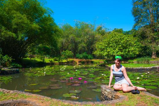 Coconut Tours - Private Day Tours: В Ботаническом саду
