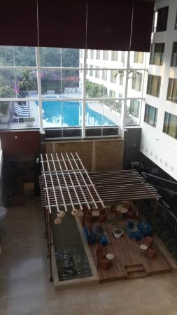 Radisson Blu Plaza Hotel Hyderabad Banjara Hills: Swimming pool view