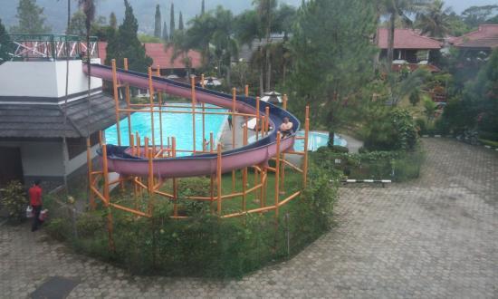 Puncak, Indonesien: kolam renang dari kamar saya