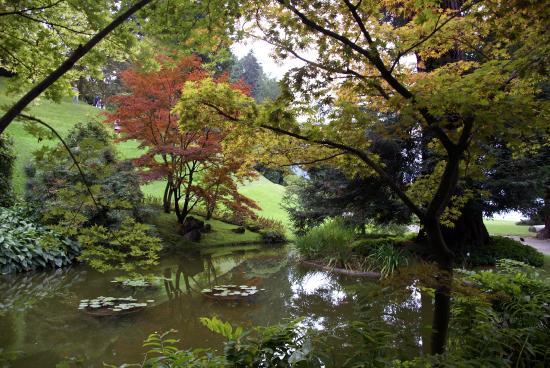 Melzi gardens 2 picture of i giardini di villa melzi bellagio tripadvisor - Giardini di villa melzi ...