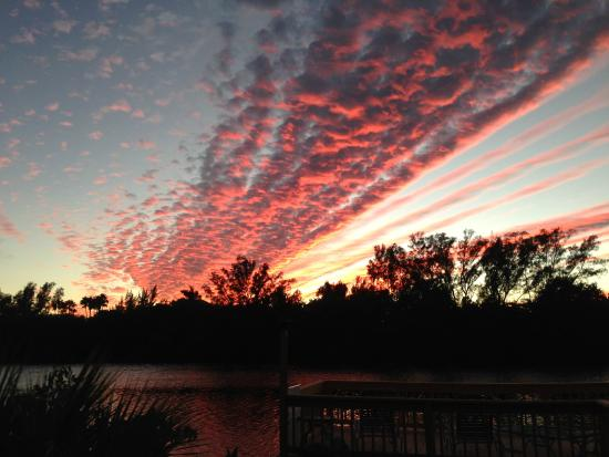 Flip Flop Cottages : Yet another beautiful sunset over Heron Lagoon.