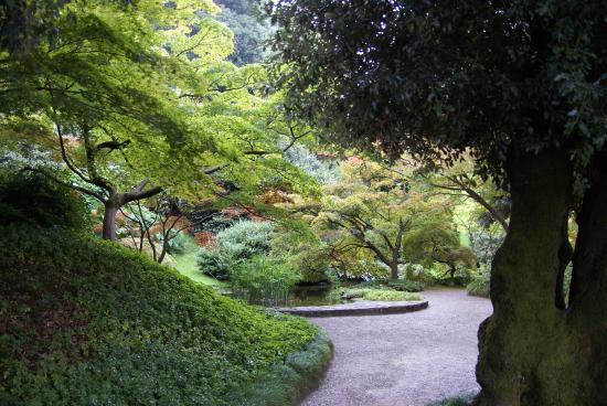 Melzi gardens 6 picture of i giardini di villa melzi bellagio tripadvisor - Giardini di villa melzi ...
