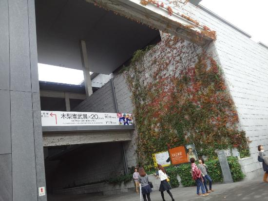 Hyogo Prefectural Museum of Art: 正面玄関