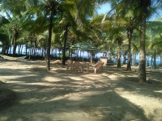 Morning Star Beach Resort Tarkarli