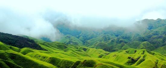 Dzukou Valley: The valley