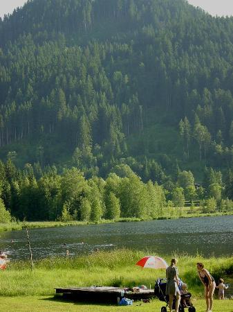 Schwarzsee: Kitz