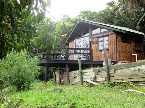 Amapondo Backpackers Lodge: Our cottage