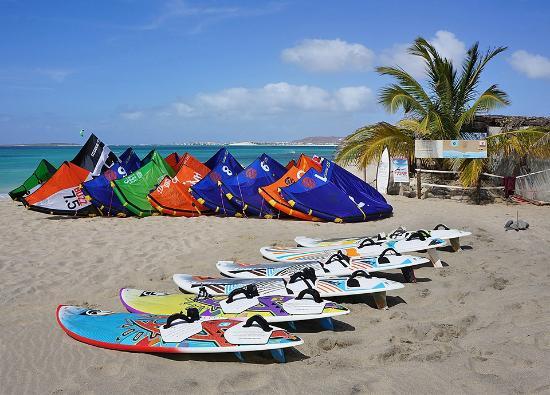 Surf Vista