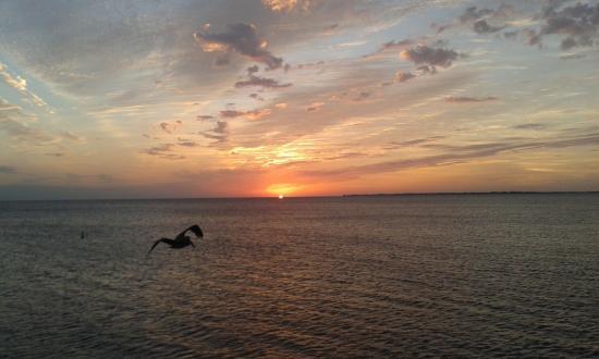 Beach Shell Inn: Sonnenuntergang am Pier