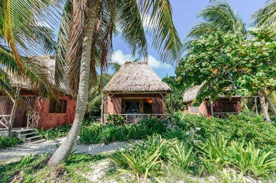 Ak'bol Yoga Retreat & Eco-Resort: Beachfront bungalows