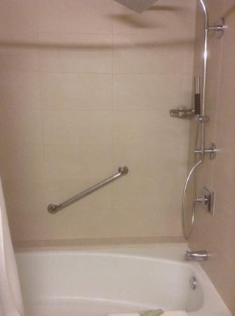 Westin Galleria Houston Hotel: shower