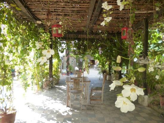 La Floresta Hostel: View of the garden