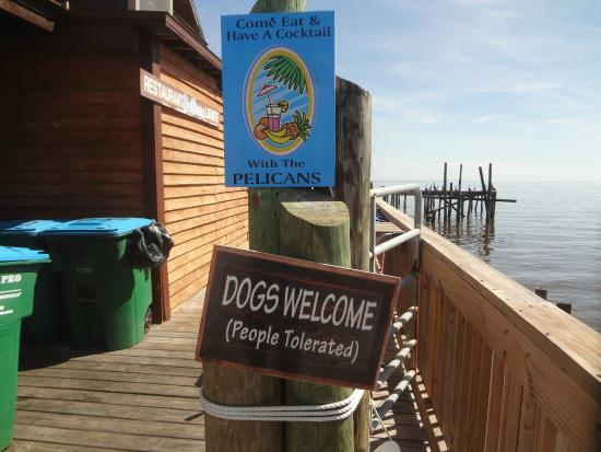 Seabreeze on the Dock : my thoughts exactly
