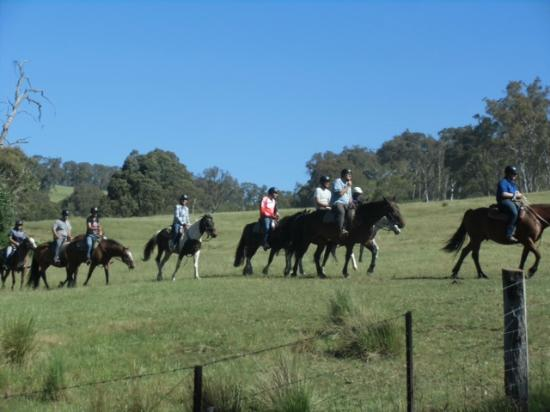 McCormack's Mountain Valley Trail Rides- Day Tours