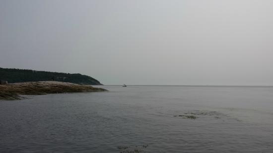 Sentier de la Pointe-de-l'Islet Trail : Vue du sentier de la Pointe-de-l'Islet